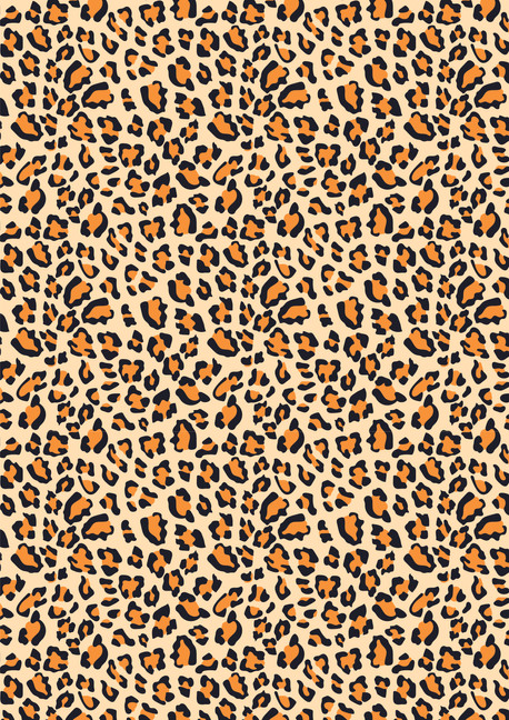 LeopardPrint-02.jpg