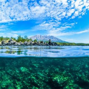 桜島の麓を海で感じよう!   スキューバーダイビング ダイビングショップSB