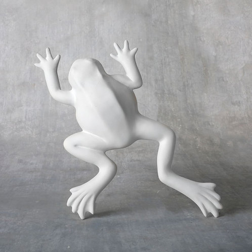 Wall Frog  Case of 6