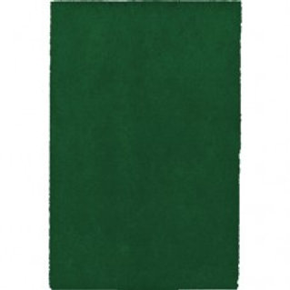 Green Cleaning Pad  (sheet)