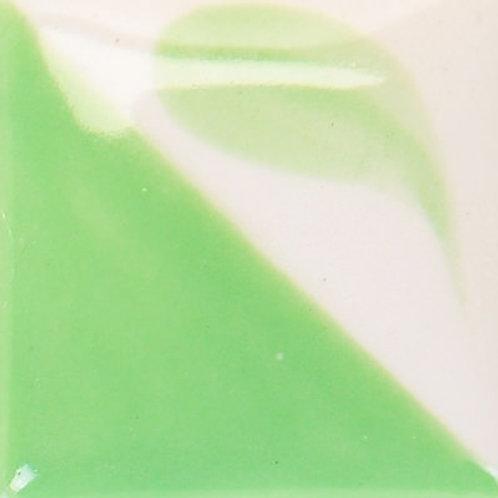 Light Kelp