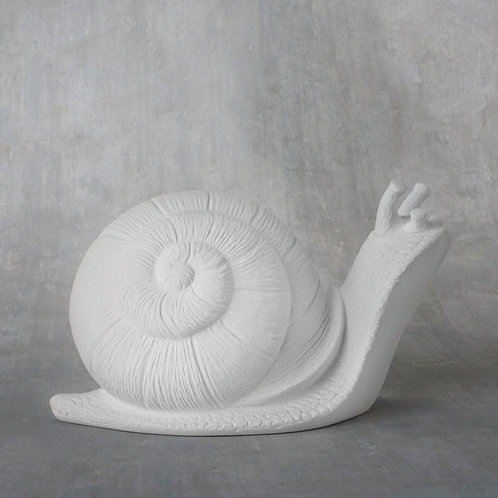 Garden Snail  Case of 4