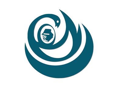 log design branding