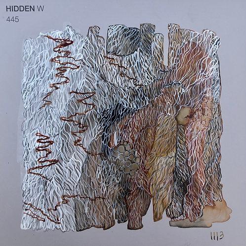 HIDDEN - Scribbly Gum Secrets