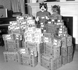 Champion sellers of Girlcat Scout Cookies