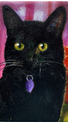 Ever Tried to Paint a Black Cat?