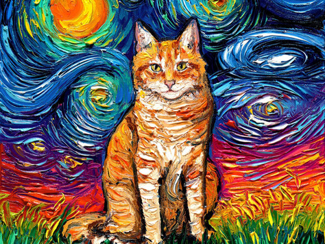 Starry, Starry Cats