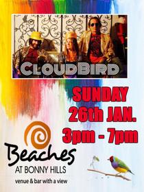 Cloudbird Poster.jpg