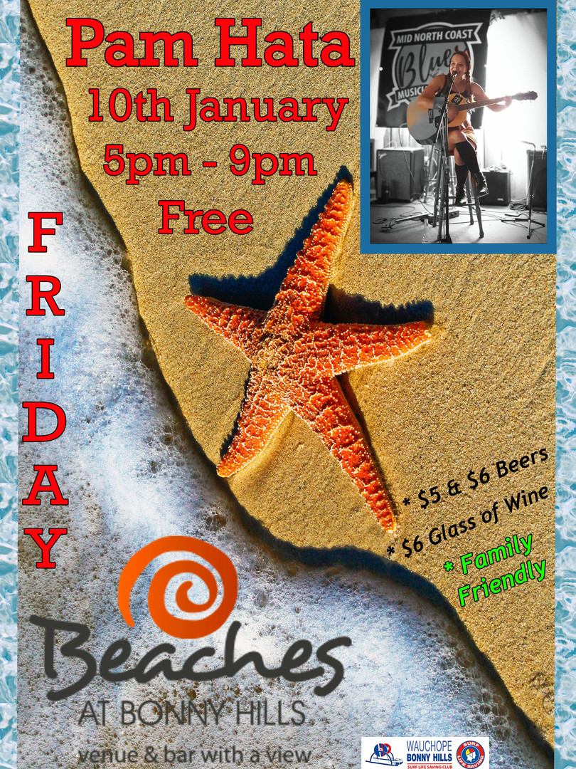 BEACHES_PAM HATA_POSTER_FRI 10th JAN_FI