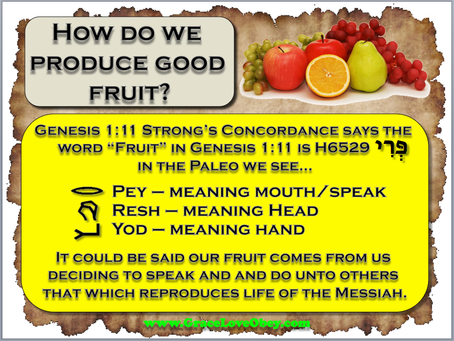 What is Good Fruit?