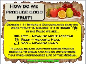 good fruit.png