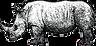 Copy of unicorn.png