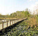 20150527_cvnp-beaver-marsh-boardwalk_img