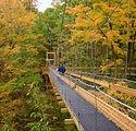 the-holden-arboretum.jpg