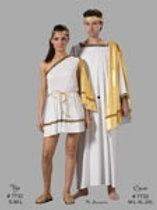 Man's Grecian Robe w/ Gold Drape