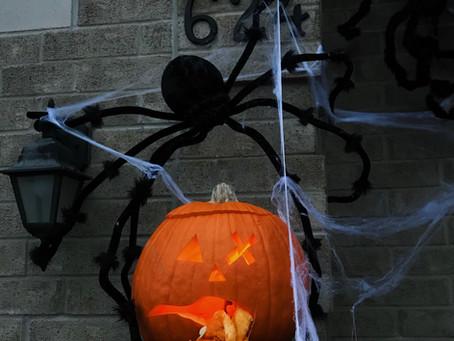 Halloween in Canada !