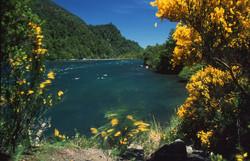 Lago Todos los Santos, Perez Rosales National Park,  Southern Chile
