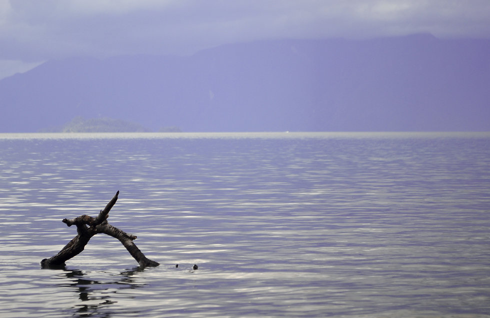 Calming water .jpg
