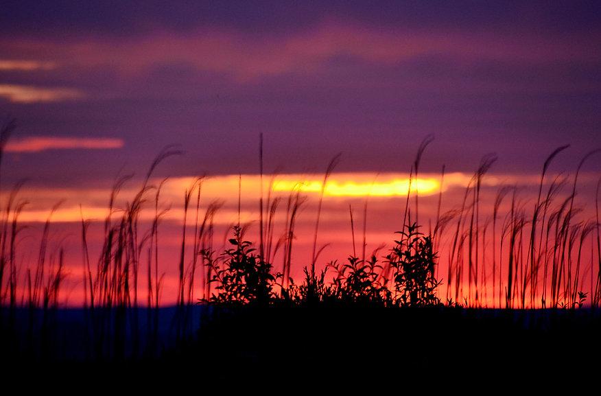 Sky Serenade in G -_1014.jpg