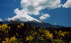 Volcán_Osorno,_Perez_Rosales_National_Park_in_Southern_Chile