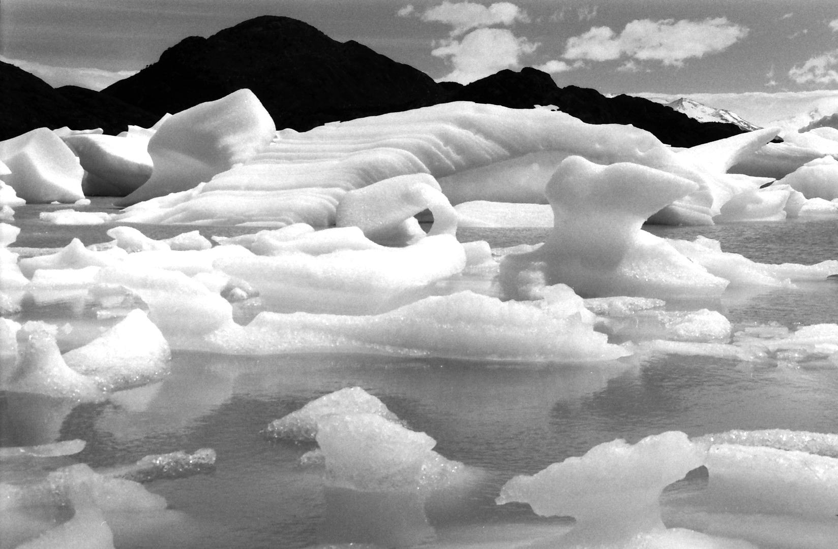 Glaciar Grey - Torres del Paine - Chilean Patagonia