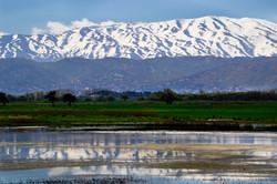 Bekaa Valley, Lebanon_0152