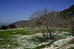 Jezzine, Lebanon_0929