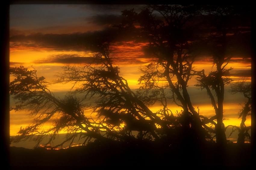 Ocaso en Tierra Del Fuego -Argentina