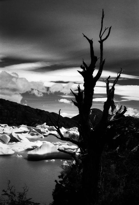 Lago Grey, Torres del Paine,  Chile