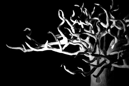 Detail of 1st Tree-palace for 'Sonatas and Nocturnes in G' installation_DSC_0025bw.jpg