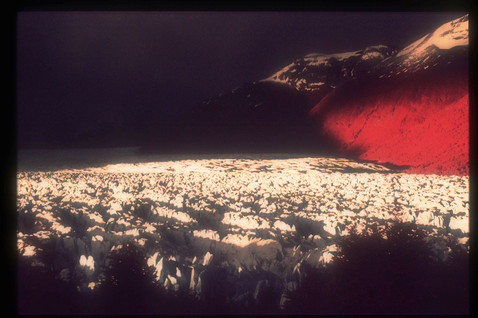 Glaciar Perito Moreno, Los Glaciares Nat