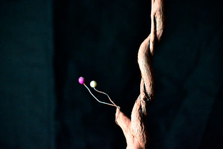 Detail of one of the energy-trees for the 'Sonatas and Nocturnes in G' installation_DSC0291.JPG