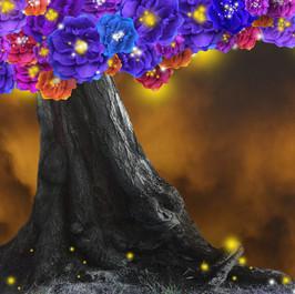 Phoenix Tree - Sonatas and Nocturnes in G