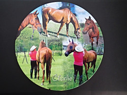 Personalised collage photo plate $30
