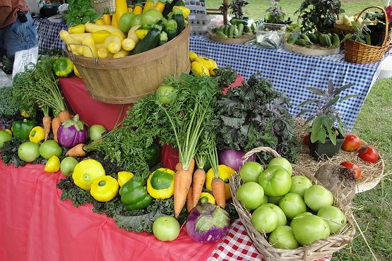Tables full of vegetables