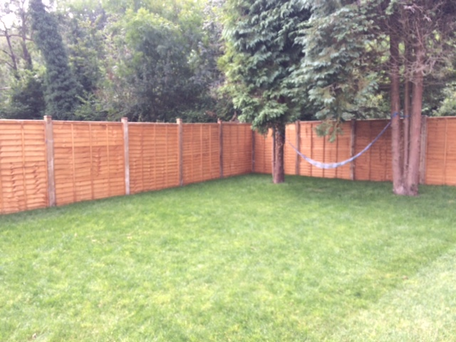 Fence and turf
