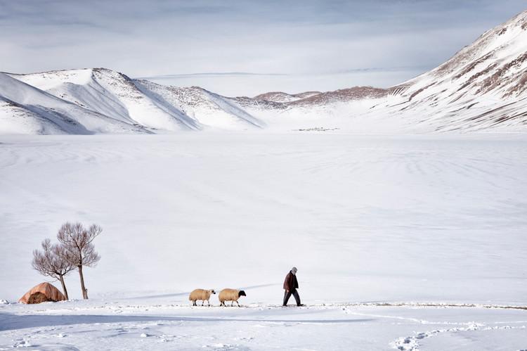 A man takes the sheep to the barn. Van, Turkey. January 2013.