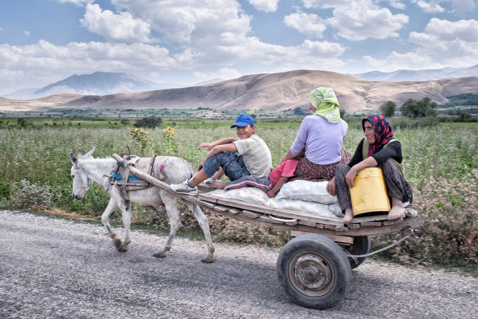 A family returning from field. Gorundu, Van. August 2011.