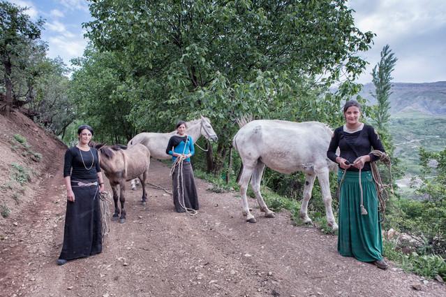 Sisters and Horses-1.jpg