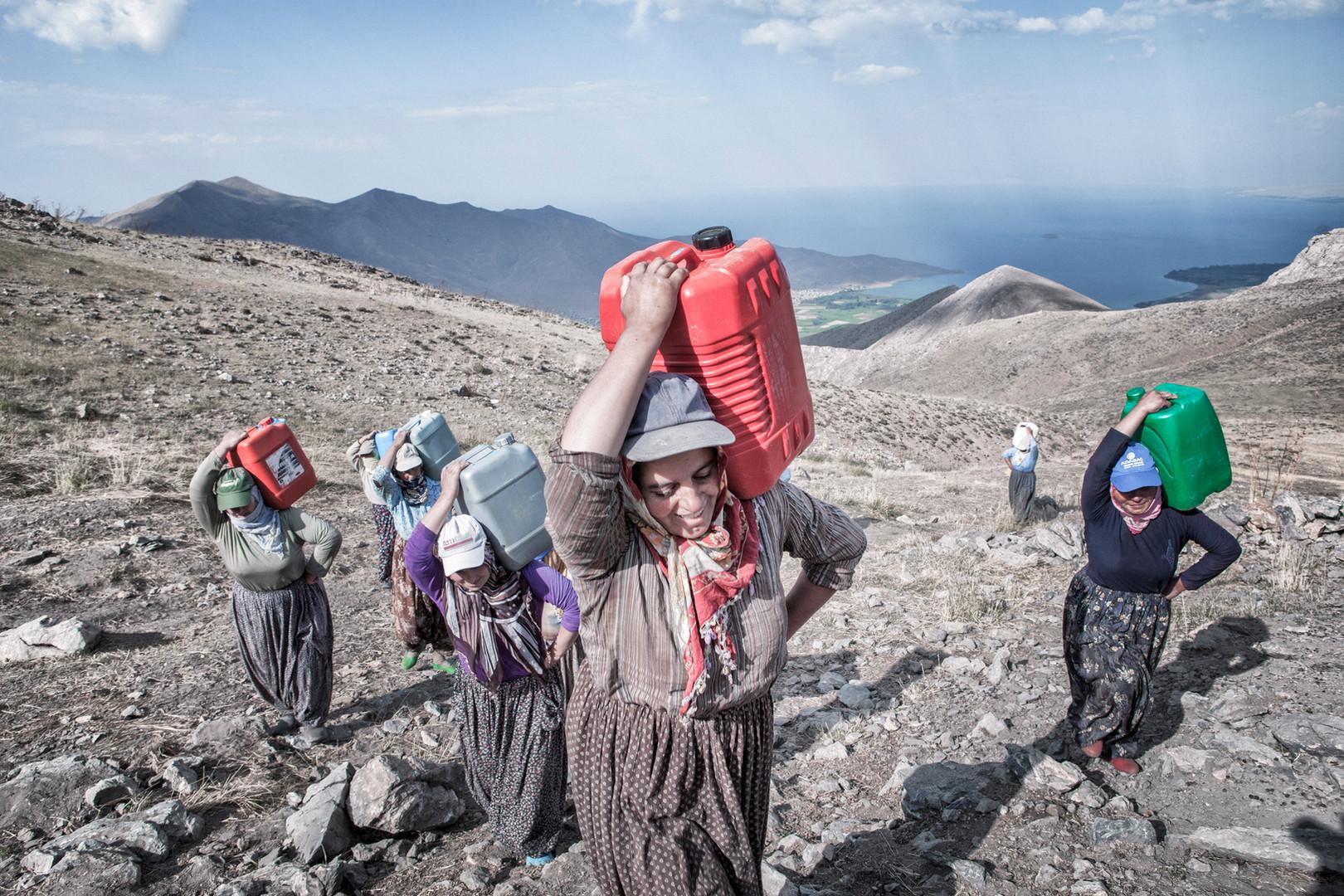 The herdswomen carry bins filled with milk. Mir Plateau, Van, August 2011.