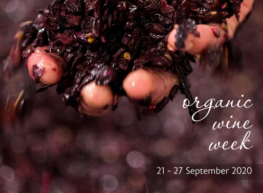 organic wine week | 7 days dedicated to organic wine