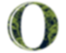 OWNZ-O_icon-final.png