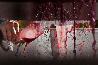 Churton_winery-4241.jpg