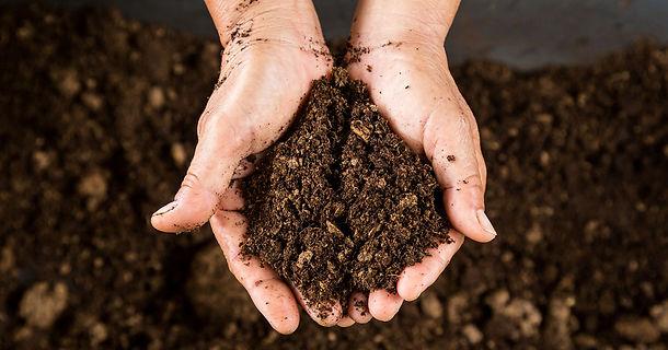 OWNZ Soil Health Series image.jpg
