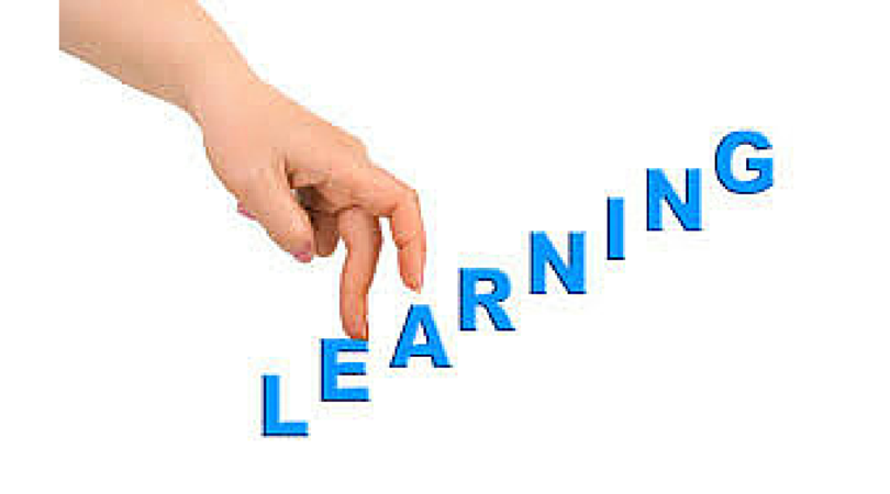 Developing The Learning Organisation