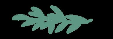 Sage leaf.png