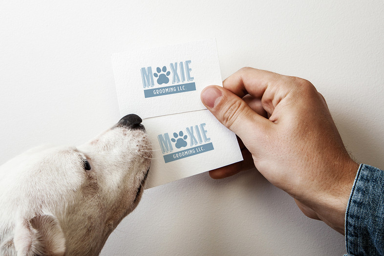 Moxie Grooming Business Card Mockup by Kaitlynn Stone