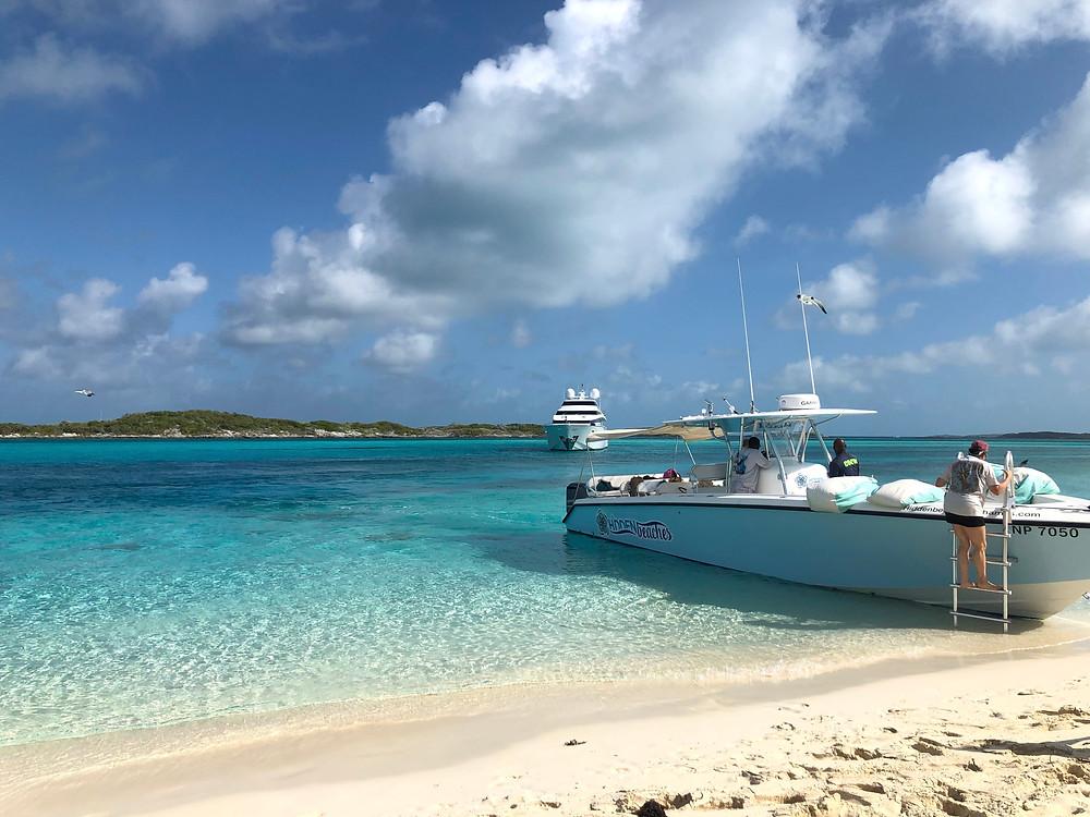 Hidden Beaches Tours Big Major Cay Exumas Bahamas Swimming with Pigs