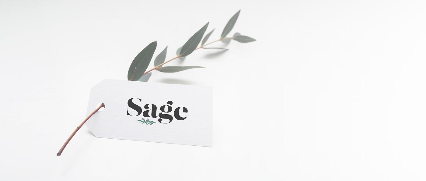 Kaitlynn Stone Sage Boutique Branding