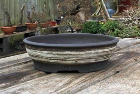 Harry Harrington's pot